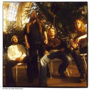 The Mushroom River Band