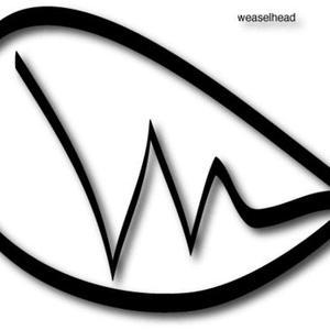 Weaselhead